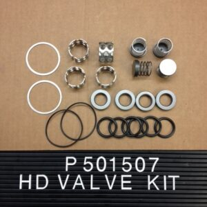 P-501507 HD Valve Kit With For R10, A04, R2020 (2req) and E04 (2 req)-0